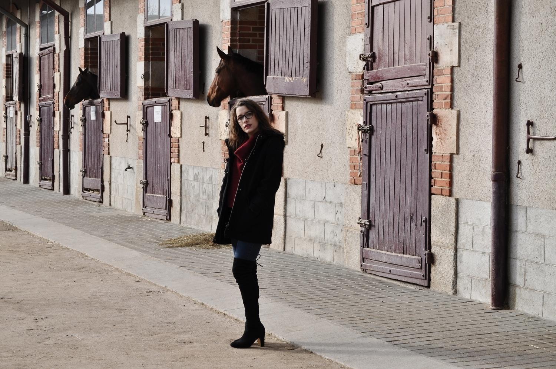 happiness-coco-je-murmure-a-l'oriel-des-chevaux-13
