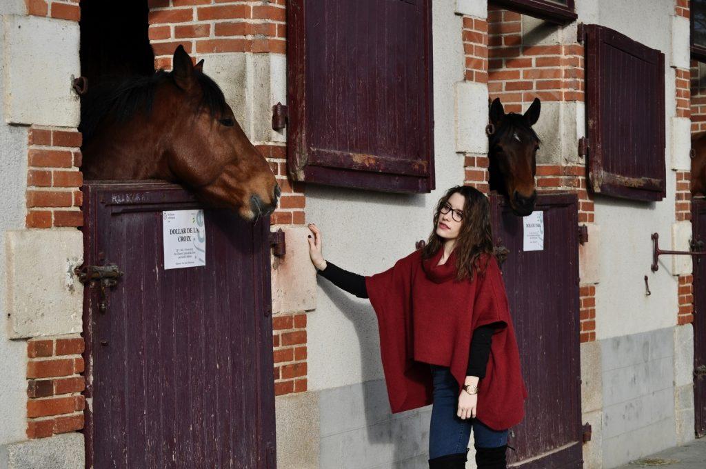 Je murmure à l'orielle des chevaux