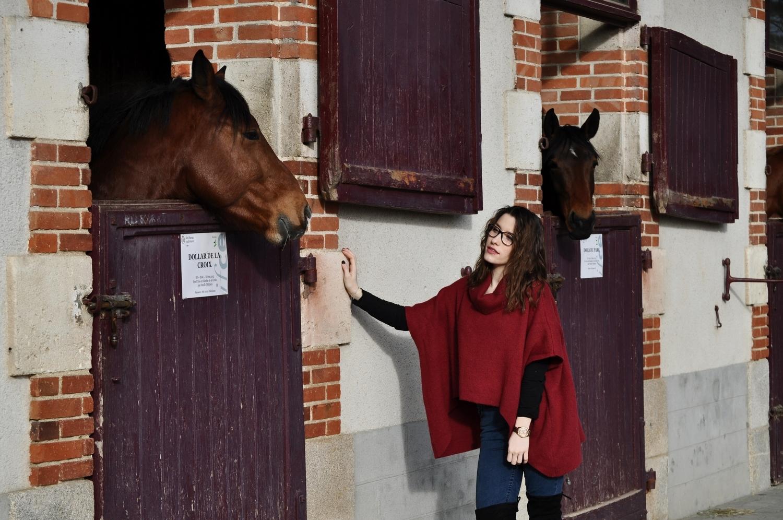 happiness-coco-je-murmure-a-l'oriel-des-chevaux-8