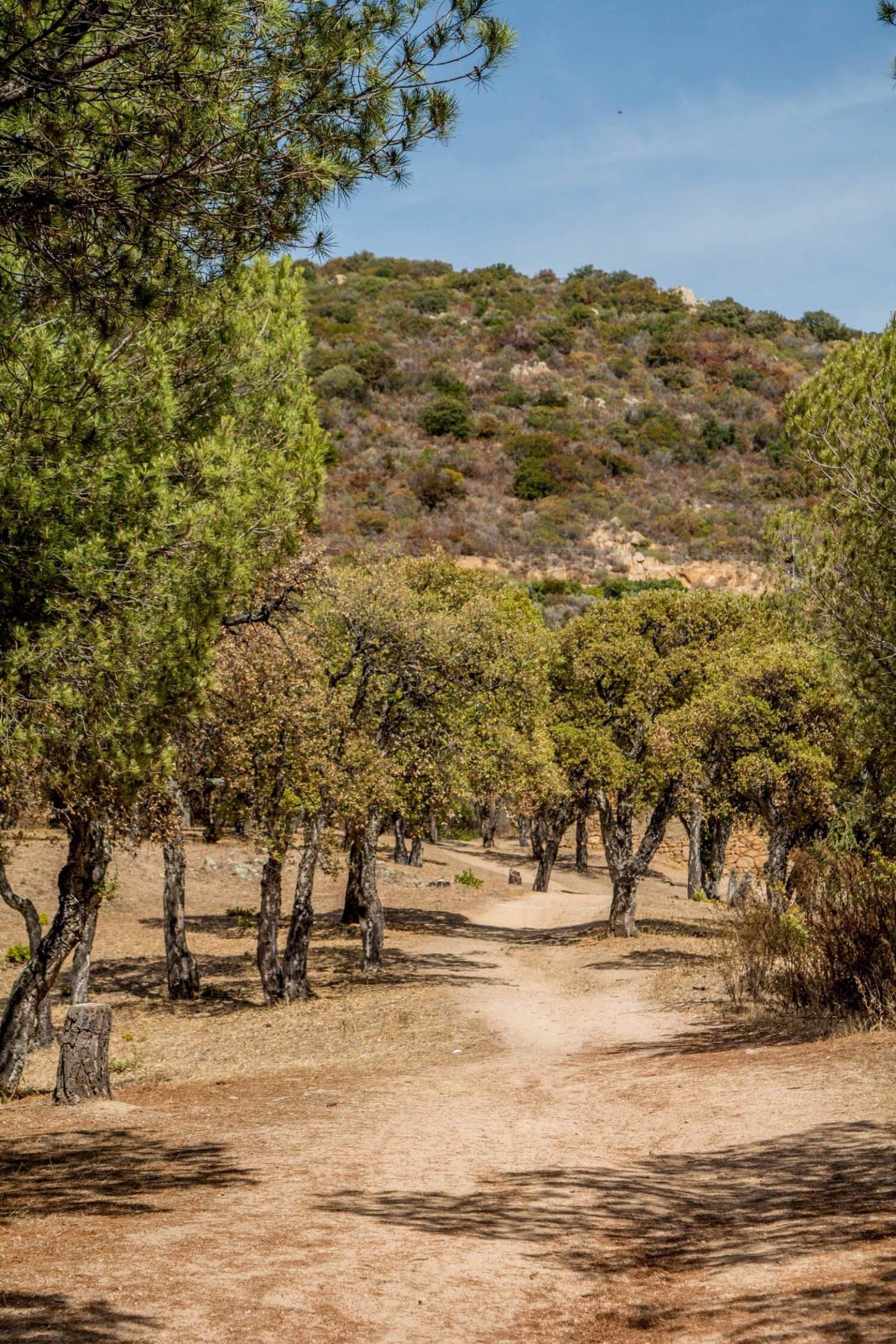 Promenade en amoureux dans le sentier du moulin et du myrte (Corse-du-sud) | OOTD + vlog sur Youtube | happinesscoco.com