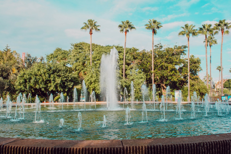 Weekly Vlog à Nice : Parc Phoenix, shopping de noël, ballade, visite, repos - happinesscoco.com